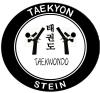Taekyon Stein